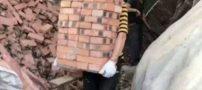 دختر جوانی که شغلش کارگری در ساختمان است (+تصاویر)