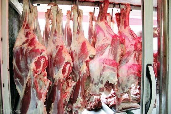 گوشت خر در گوشت های چرخ کرده در تهران
