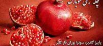 اس ام اس جدید تبریک شب یلدا (4)