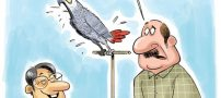 کاریکاتورهای مفهومی و جالب (کاریکاتور اجتماعی)