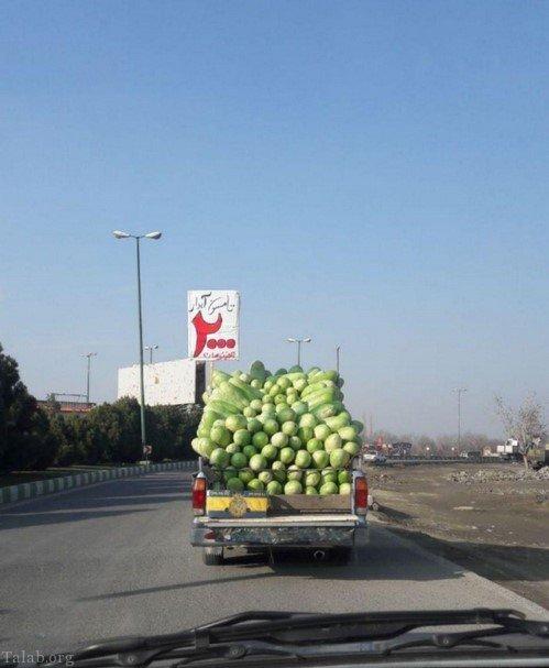 عکس های خنده دار و بامزه ایران و جهان (72)