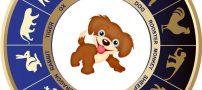 طالع بینی سال سگ – 97