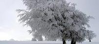 اس ام اس خواندنی با موضوع زمستان (3)