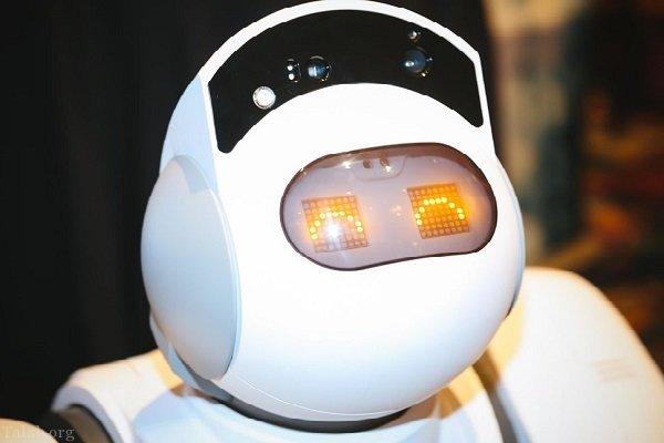 آشنایی با رباتی که کارهای خانه را انجام میدهد !