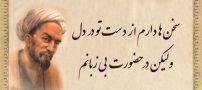بهترین اشعار زیبا و آموزنده سعدی (اشعار بوستان سعدی)