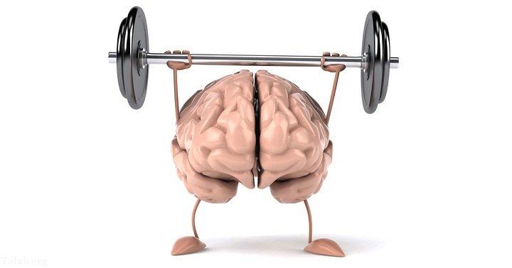 ایده هایی کاربردی برای تقویت حافظه