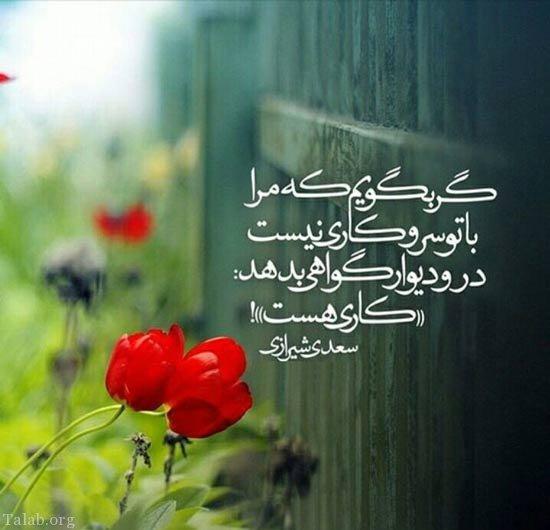 شعرهای عاشقانه داغ از بوسه و معشوقه (شعرهای عاشقانه آغوش)