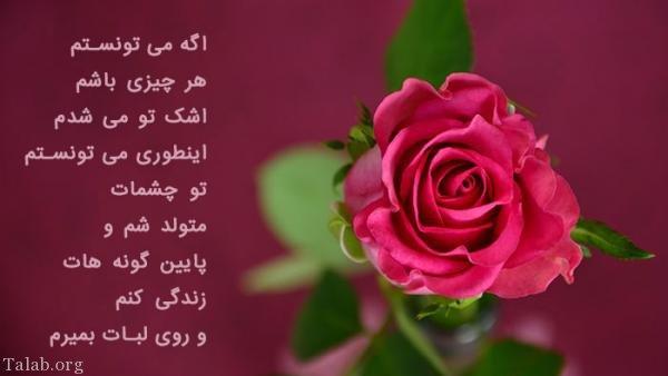 تصویر: http://www.talab.org/wp-content/uploads/2018/02/1408165621-talab-org.jpg