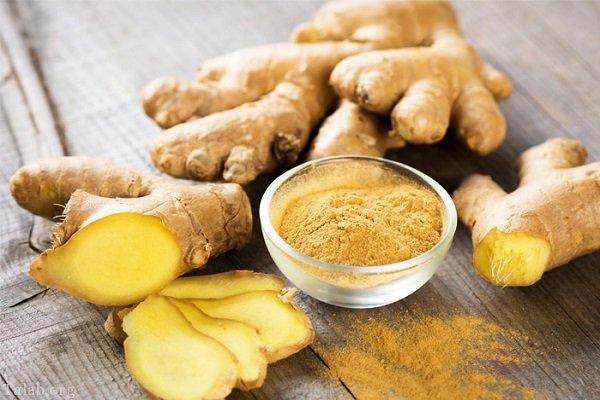 مصرف روزانه زنجبیل | خواص فراوان گیاه دارویی زنجبیل برای بدن