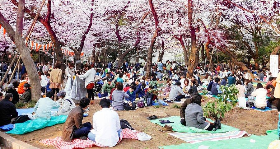 55 نکته مهم درباره ژاپن | دانستنی های جالب مردم ژاپن