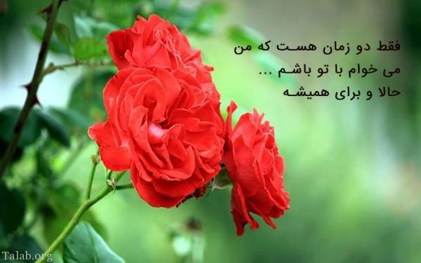 تصویر: http://www.talab.org/wp-content/uploads/2018/02/233632826-talab-org.jpg