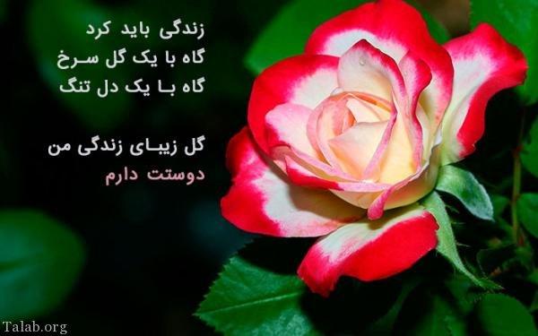 تصویر: http://www.talab.org/wp-content/uploads/2018/02/736525924-talab-org.jpg