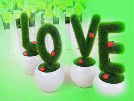 3 مدل سبزه انداختن عید نوروز | آموزش سبز کردن سبزه عید | سبزه عید عروسکی