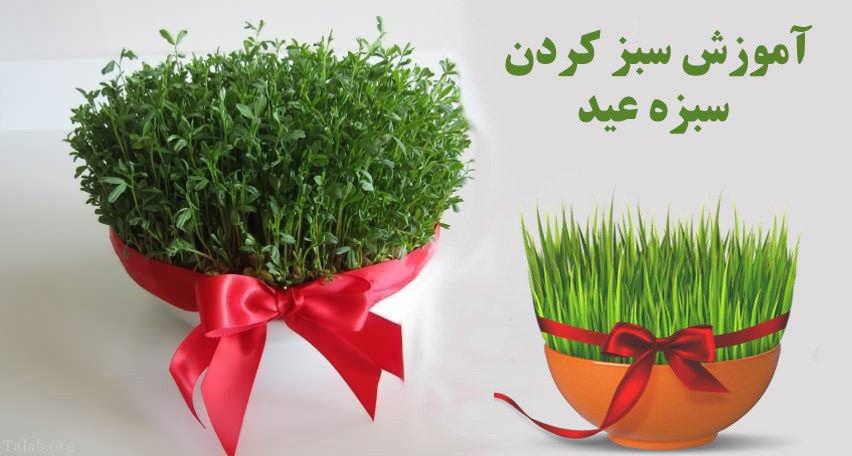 مدل سبزه عید عروسک