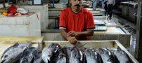 تصاویری از انواع ماهی در بازار ماهی فروشان بندرعباس