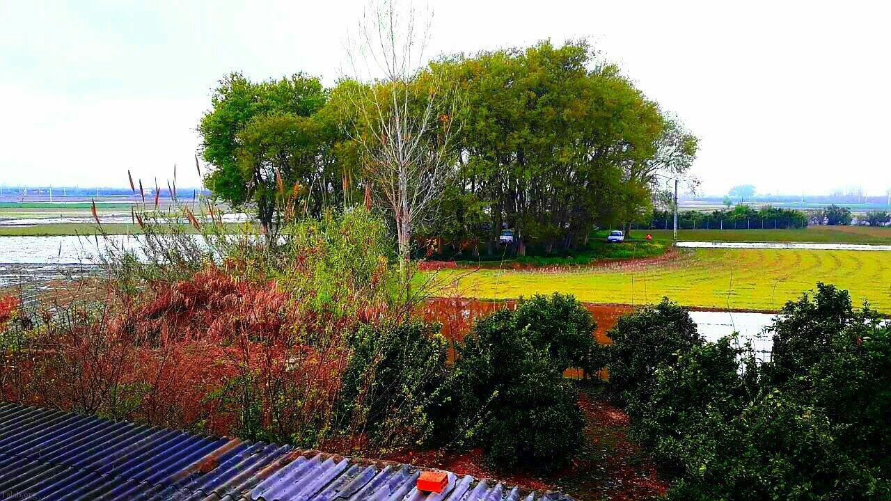 عکس هایی از طبیعت بهاری | تصاویر بهاری | طبیعت زیبا در بهار