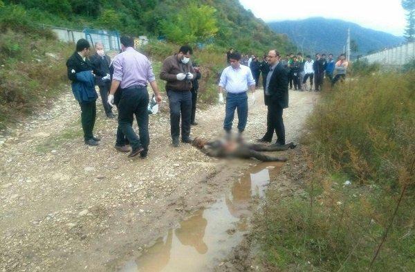 قتل وحشتناک 8 زن فقط بخاطر سرقت طلا در گیلان (عکس دلخراش +18)