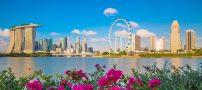 علت پیشرفت سنگاپور چیست؟
