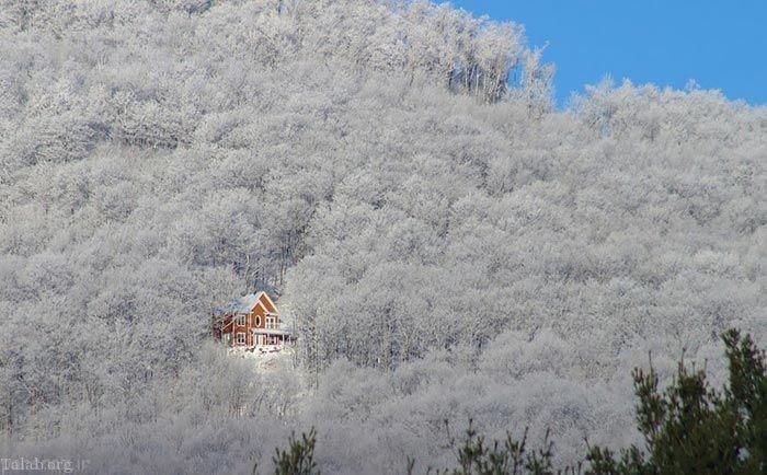 عکس های زیبا از خانه های رویایی شگفت انگیز در طبیعت