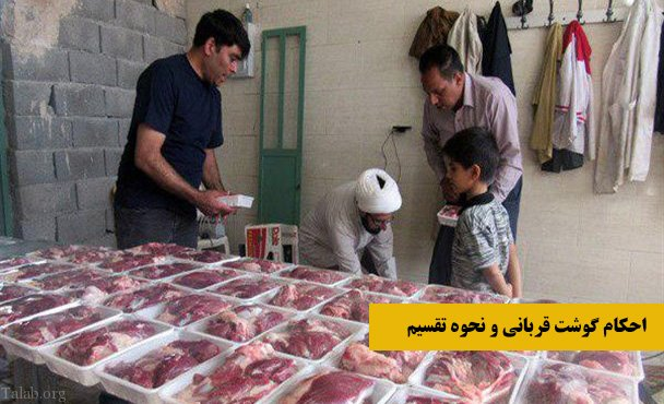 احکام گوشت قربانی و نحوه تقسیم گوشت قربانی