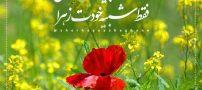 جملات زیبا و عاشقانه + متن کوتاه عاشقانه (97)