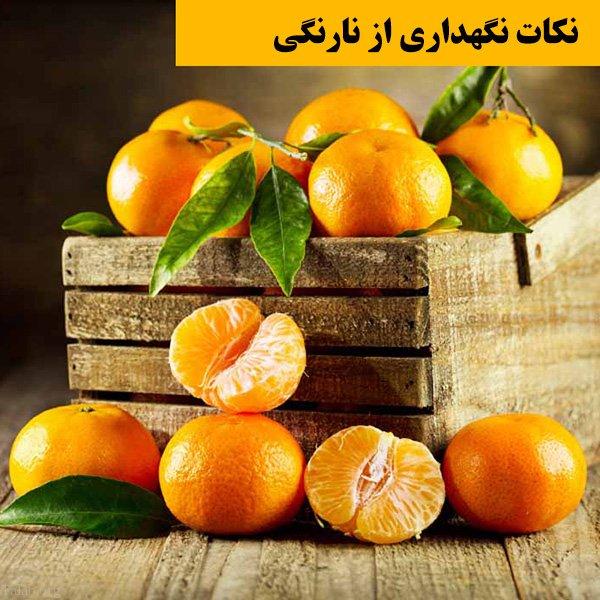خواص نارنگی برای سلامتی و زیبایی | نکاتی در مورد مصرف نارنگی