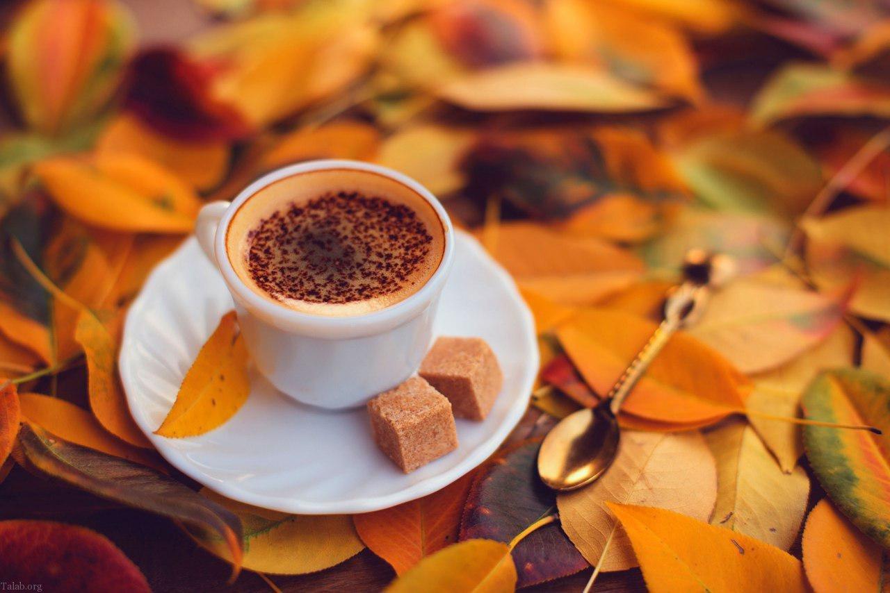 اس ام اس زیبای فصل پاییز | متن زیبا درباره ی فصل پاییز