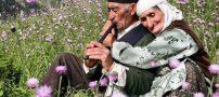 متن زیبا در مورد سالمندان   اس ام اس و متن تبریک روز جهانی سالمندان