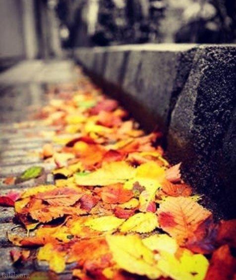 انشا پاییز عادی