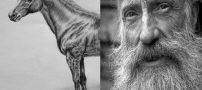 حکایت پیرمرد بد شانس و اسبش + حکایت دزد سر گردنه
