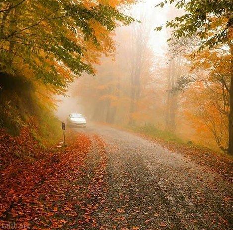 متن زیبای پاییزی | عکس و متن عاشقانه در مورد پاییز