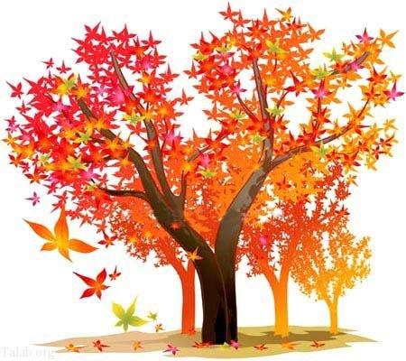انشا در مورد فصل پاییز | انشای زیبا و ادبی درباره زیبایی های پاییز