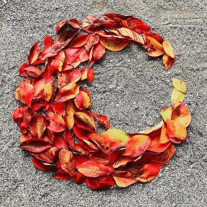 انشای ادبی در مورد پاییز