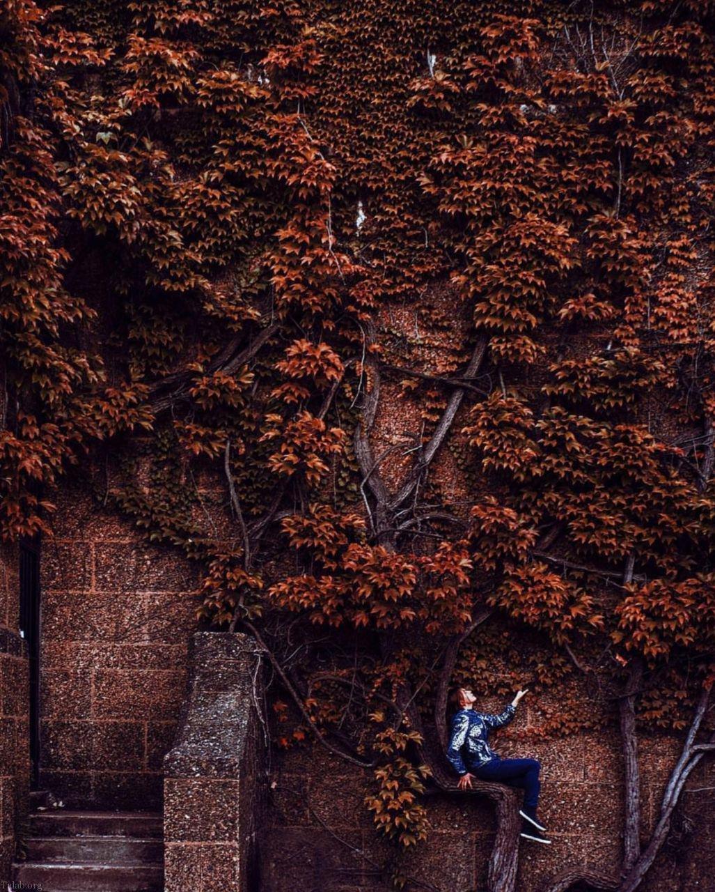 عکس عاشقانه و احساسی پاییز همراه با متن زیبای پاییزی