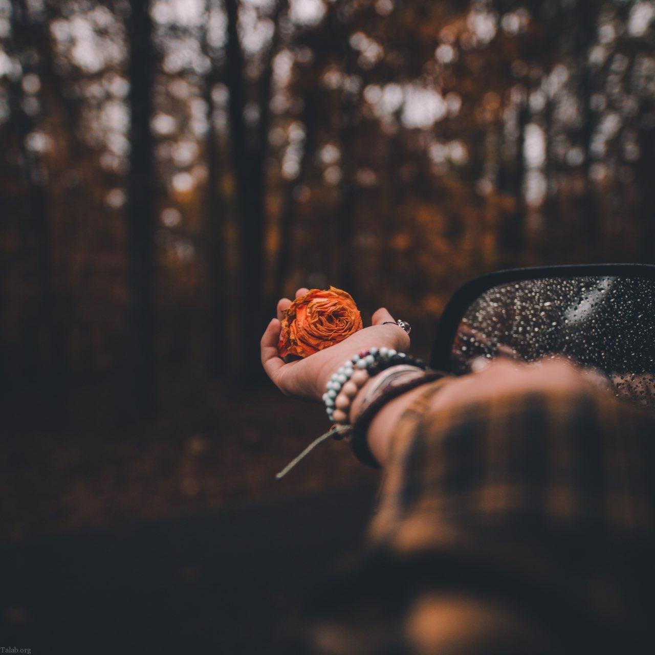 عکس های عاشقانه و رمانتیک پروفایل + عکس و متن عاشقانه زیبا 1398