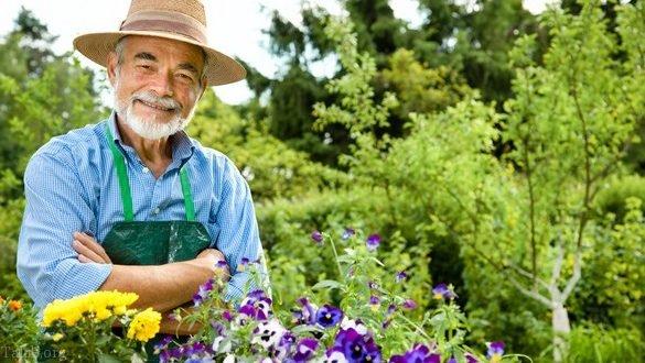 تعبیر خواب باغ | تعبیر خواب باغبان | تعبیر خواب باغ میوه