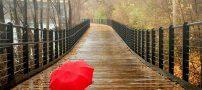 اس ام اس زیبا برای روزهای بارانی | متن زیبا ویژه هوای بارانی