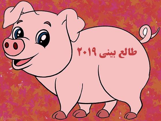 طالع بینی سال میلادی 2019 (سال خوک)