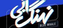 بیوگرافی بازیگران سریال نهنگ آبی   خلاصه داستان سریال نهنگ آبی