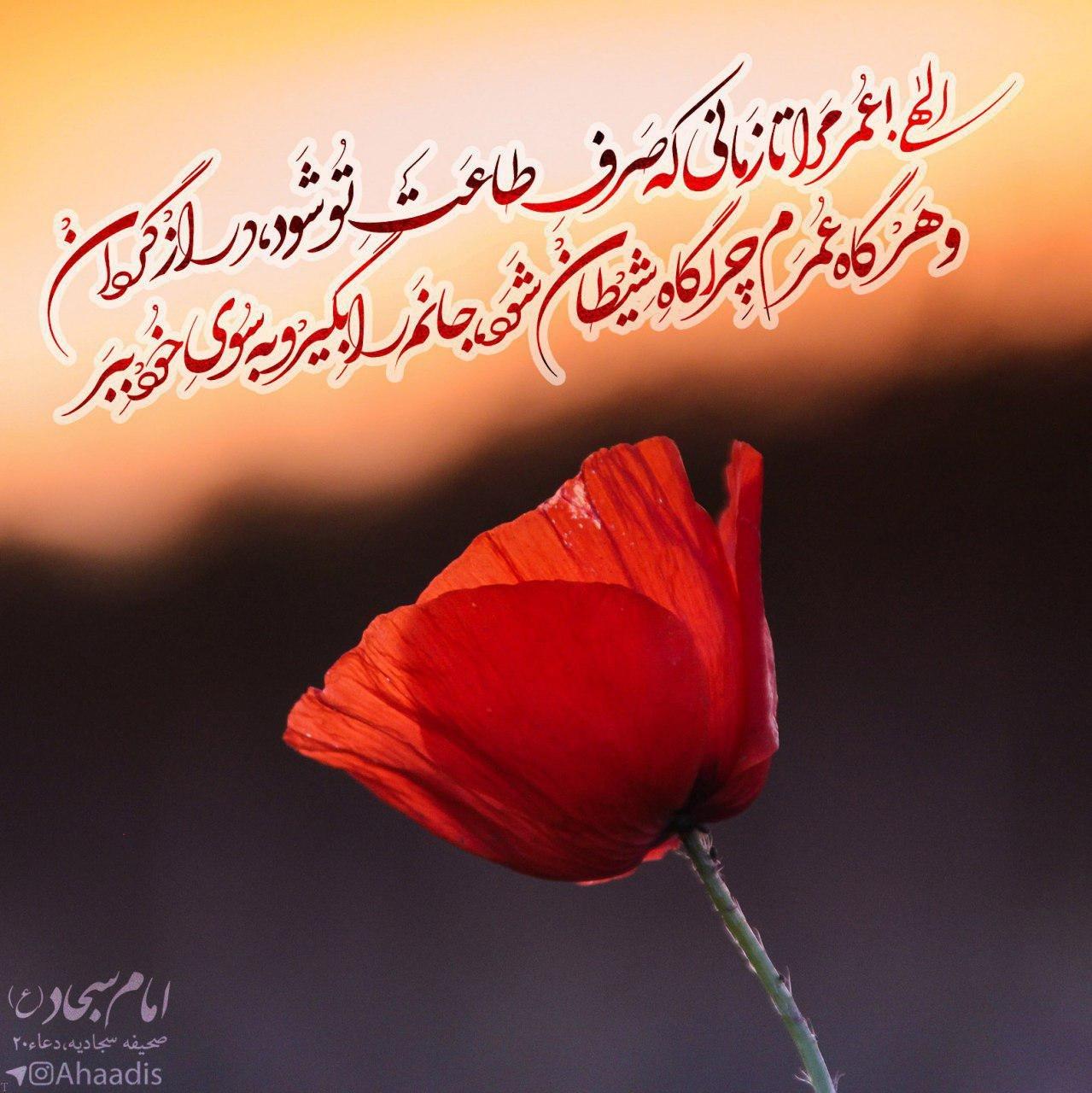 كنيه و القاب مهم امام سجاد علیه السلام
