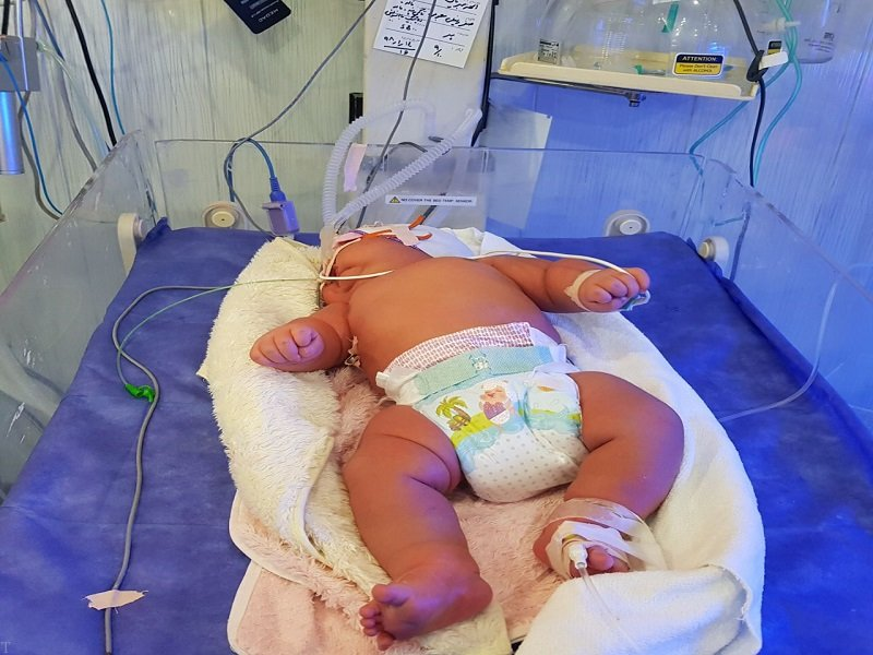 سنگین وزن ترین نوزاد ایران در سال 98 متولد شد (عکس)