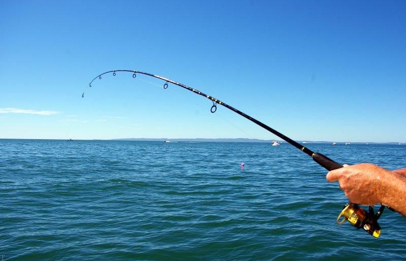 تعبیر خواب ماهیگیری   تعبیر خواب ماهیگیری در رودخانه