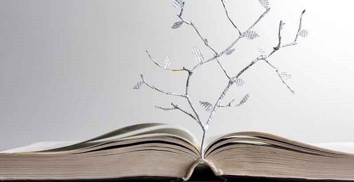 16 درس مهم در زندگی که باید حتما بدانید !