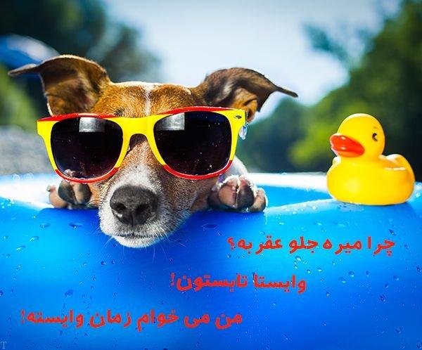 عکس پروفایل تابستان | متن و عکس درباره زیبایی های تابستان