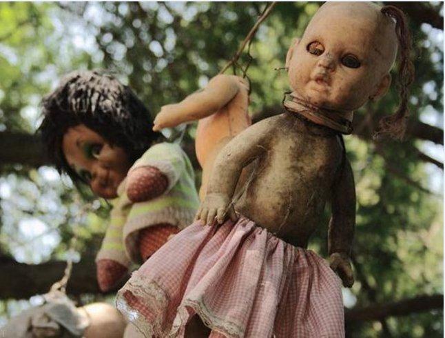 جزیره ای تسخیر شده توسط عروسک ها