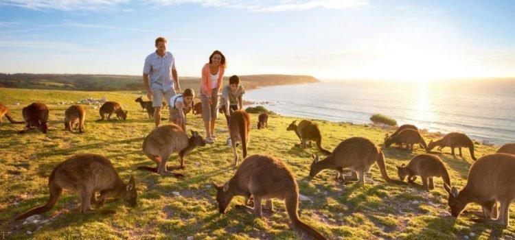 مهاجرت به استرالیا از طریق ویزای سرمایه گذاری