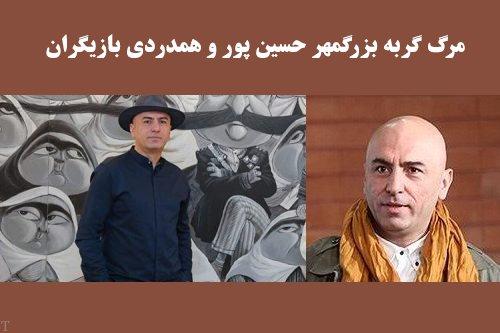 مرگ گربه خانگی بزرگمهر حسین پور و همدردی بازیگران (عکس)