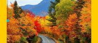 بهترین اشعار عاشقانه پاییزی + شعرهای عاشقانه در مورد فصل پاییز