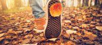 متن زیبا درباره فصل پاییز | شعر زیبا در مورد پاییز