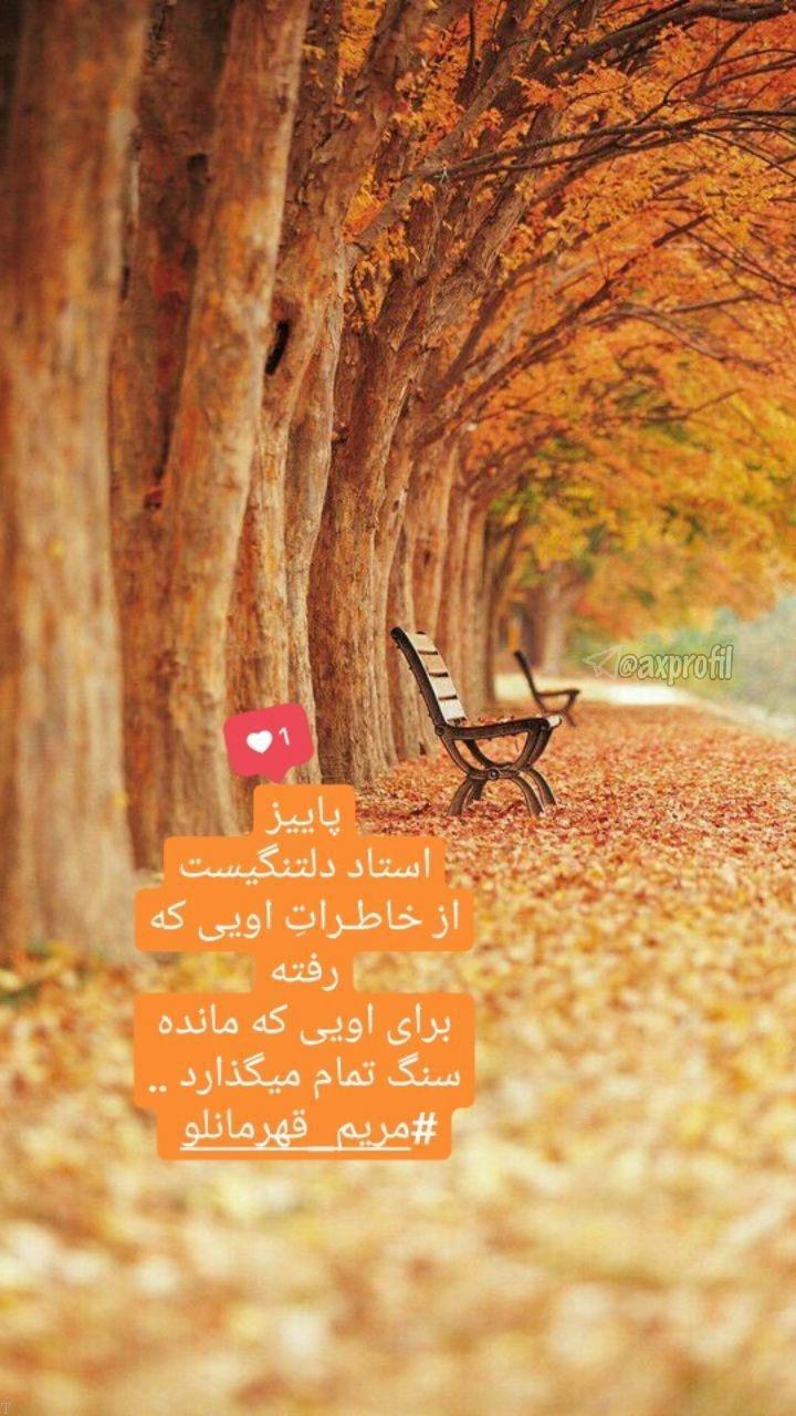 استوری های عاشقانه زیبا برای اینستاگرام (10)